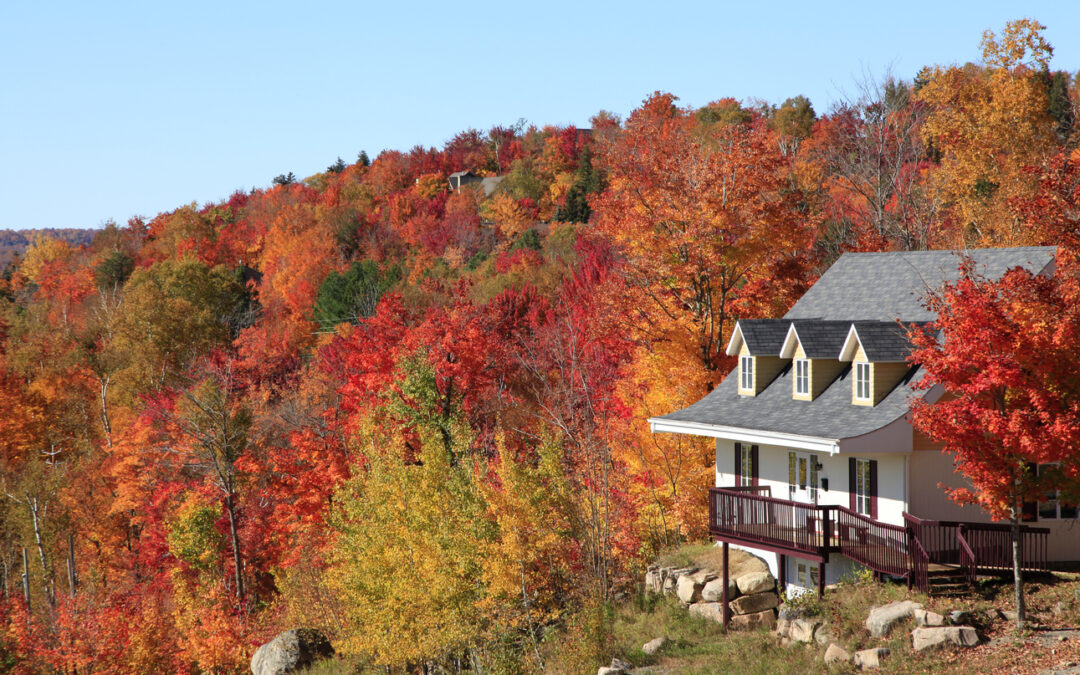 13 tips on getting your home ready for fall